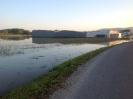 Hochwasser 2013_1