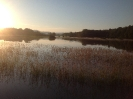 Hochwasser 2013_32